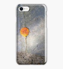 autumn 1 iPhone Case/Skin