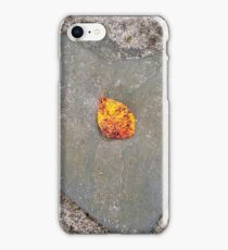 autumn 4 iPhone Case/Skin