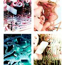 Untitled- Medical Slides by claire-virgona