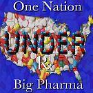 One Nation UNDER BIg Pharma(read my description if you dare). by Ann Morgan