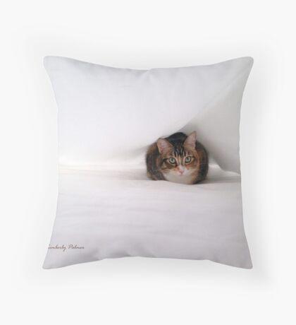 Between the Sheets II Throw Pillow