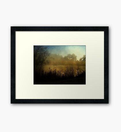 Edge of the Autumn Lake Framed Print