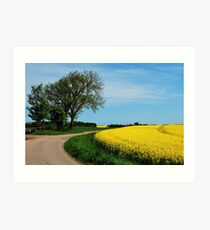 For all who love yellow Art Print