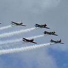 Stunt planes 2 by Mark Walker