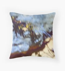 Rock and desert flowers, Pinnacles, Nambung Throw Pillow