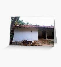 Indian Vernacular Houses-4 Greeting Card