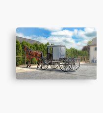 Horse & Buggy Metal Print