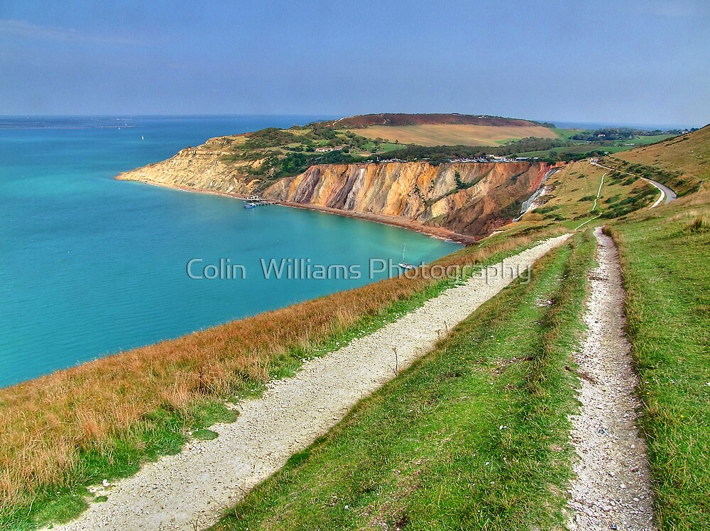 The Track To Alum Bay - I.O.W. by Colin  Williams Photography