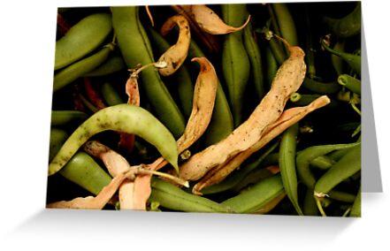 I've bean in the garden where I bean picking by Stephen Thomas