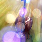 Cello by Toradellin