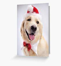Cute Golden Retriever Wearing Santa Hat art photo print Greeting Card