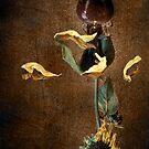 Tears ~ III by Pene Stevens