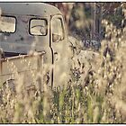 Wrecks and Weeds #2  by Paul Amyes