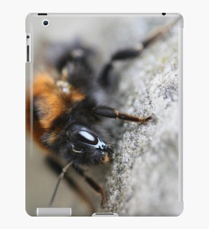 Don't just bee...bee amazing! iPad Case/Skin
