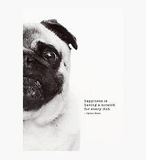 Ziggy Photographic Print