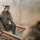 Waiting For A Train von Peter O'Hara