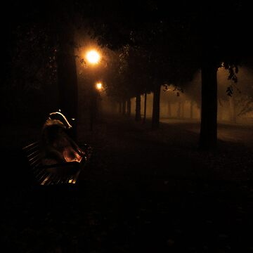 Badger in the night by ItsBadger