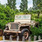 Jeep by FelipeLodi