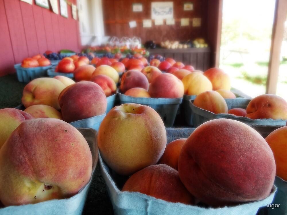 fresh fruits and veggies by vigor