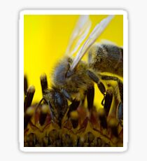 Bee on Sunflower Sticker