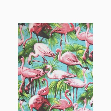 Flamingos by melaniewoon