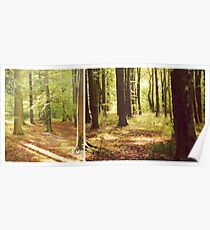 Early Autumn Glory (Diptych) Poster