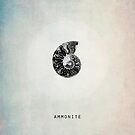 Ammonite by Ingrid Beddoes