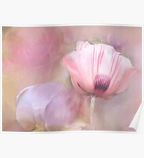 Poppy and Peony Poster