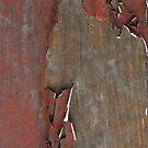 Peeling Red Paint on Old Wood by pjwuebker