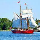 Lilla Dan going to port. by imagic