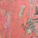 Dirty Peeling Red Paint by pjwuebker