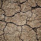 Cracked Dried Mud by pjwuebker
