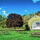 Veterans Park October Sky by James Meyer