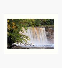 Tahquamenon Falls from the River Art Print