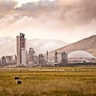 Tehacheppi, CA by Jonathan Coe