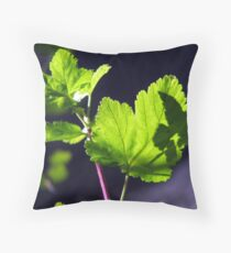 Shadow of a Torn Leaf Throw Pillow