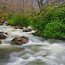 Spring Brook by JHRphotoART