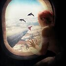 Dolphins at My Window by Paula Belle Flores