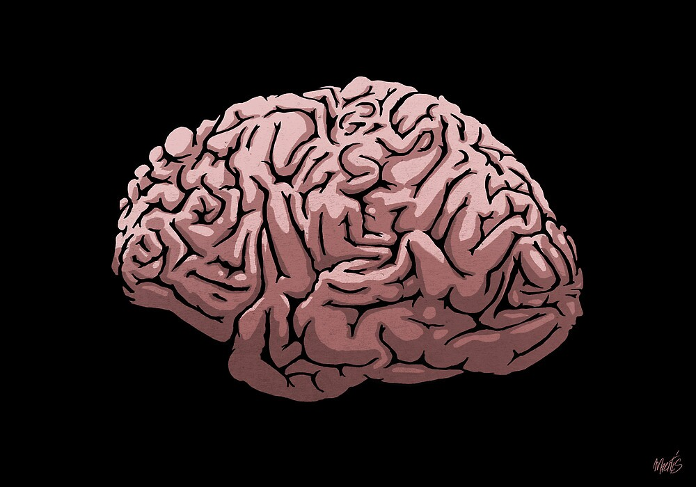 Human Brain by maentis
