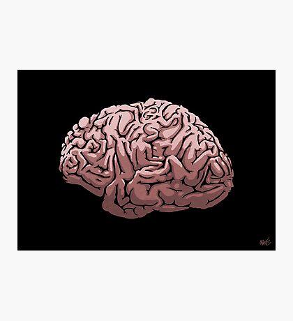 Human Brain Photographic Print