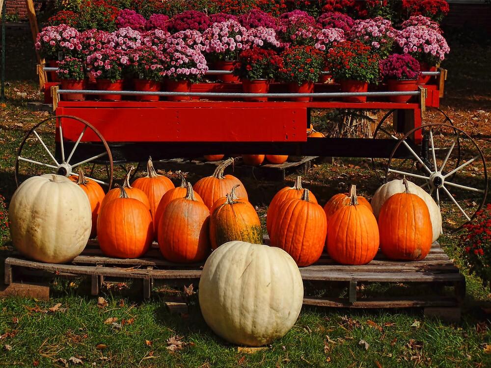 Mature Harvest by PineSinger