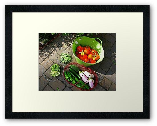 Last Harvest by Eileen McVey