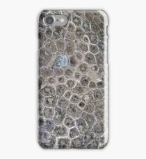Petoskey Stone, Pure Michigan! iPhone Case/Skin