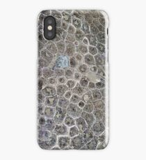 Petoskey Stone, Pure Michigan! iPhone Case
