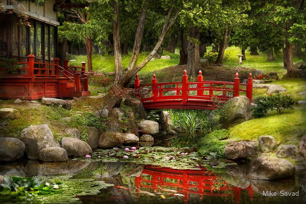 Japanese Garden - Meditation  by Michael Savad