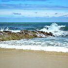 Scenic South Carolina, USA. by Kathy Baccari