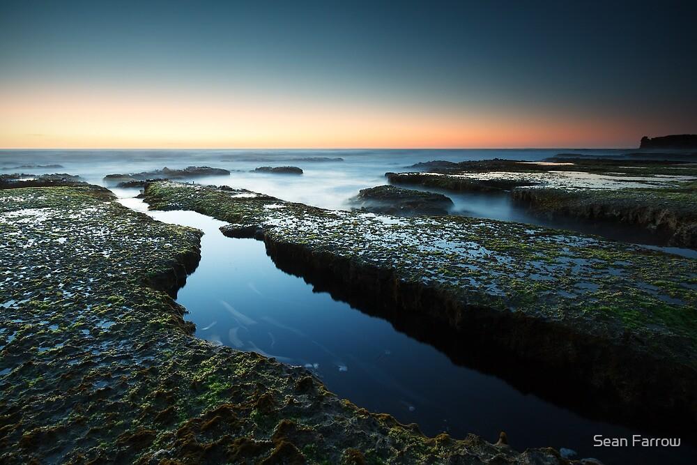 Montforts Dusk - Blairgowrie, Victoria, Australia by Sean Farrow