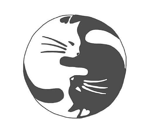 «Gatos Ying yang» de Canyounotqueenb