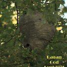 Pagan God Lurking! by Thomas Murphy