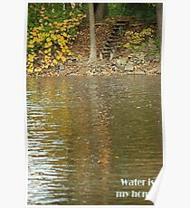 Water is my home! Poster